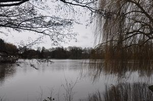 Fleet Pond- click for photo gallery